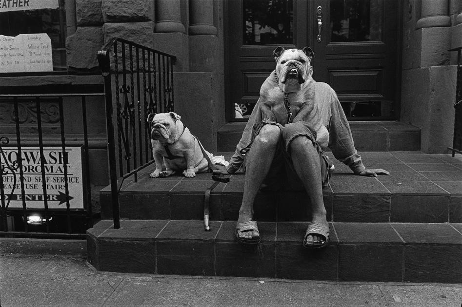 Elliott Erwitt, New York, 2000